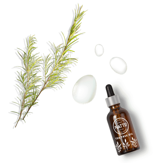 about-tea-tree-drops